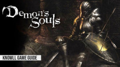Demon's Souls - Game Guide