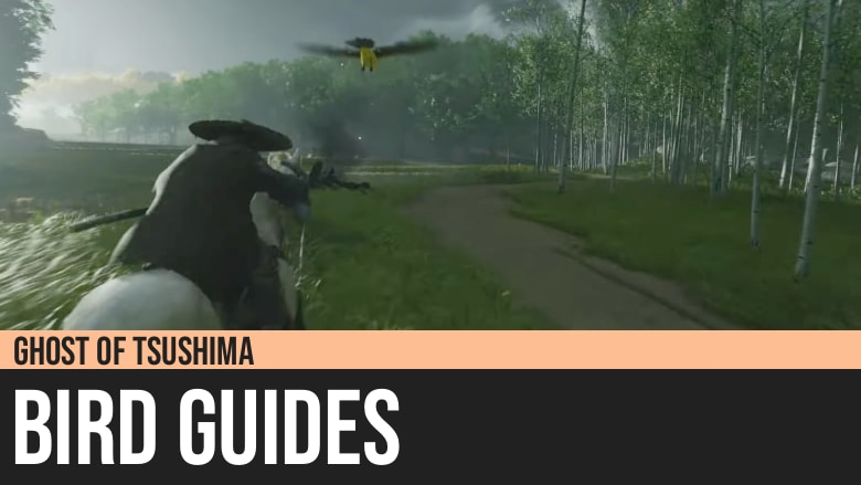 Ghost of Tsushima: Bird Guides
