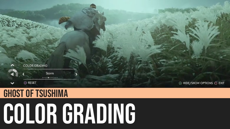 Ghost of Tsushima: Color Grading