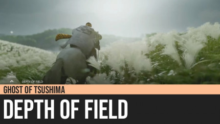 Ghost of Tsushima: Depth of Field