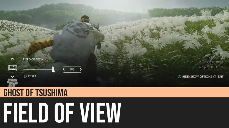 Ghost of Tsushima: Field of View