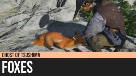 Ghost of Tsushima: Foxes