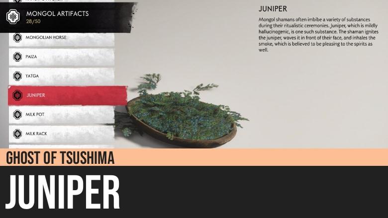 Ghost of Tsushima: Juniper