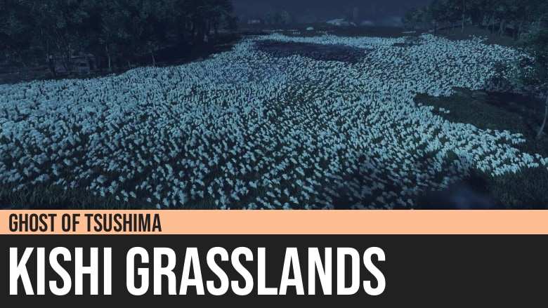 Ghost of Tsushima: Kishi Grasslands