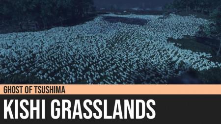 Ghost of Tsushima: Kishi Grasslands