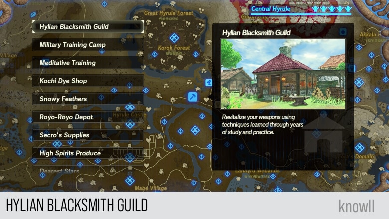 Hyrule Warriors Age Of Calamity Services Guide