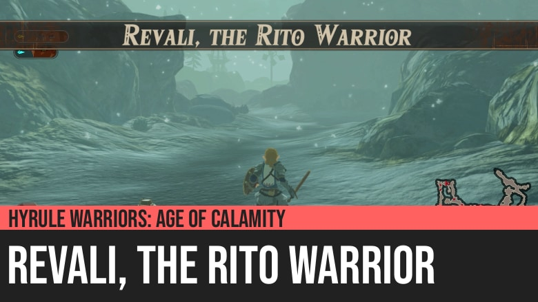 Hyrule Warriors: Age of Calamity - Revali, the Rito Warrior